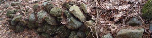 cropped-2010-12-31-23-00-00-83.jpg