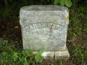 sarahware